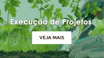 Execução de Projetos - Cascalheira Garden - Jardinagem e Paisagismo